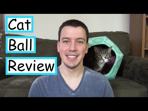 Cat Ball Review | Quality Cat Bed