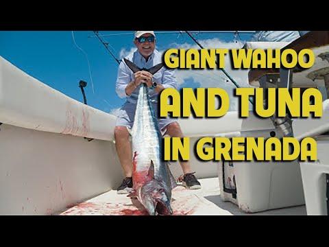 Grenada:  Land Of The Giants | Sportsman's Adventures 2020 - Season 26, Episode 1