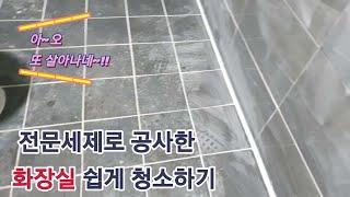 신축화장실 입주 청소하는법/#타일공사후시멘트매지청소하는…