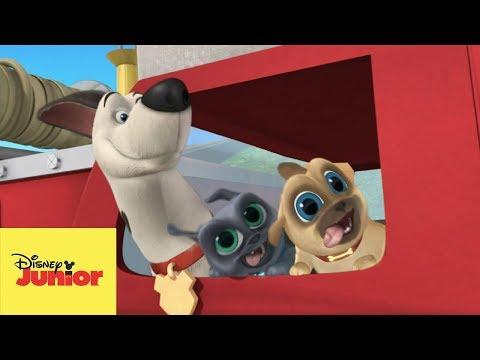 🎶 La Sirena a Sonar   Puppy Dog Pals