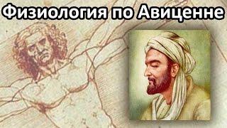 Физиология по Авиценне - Петренко Валентина Васильевна
