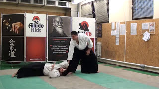 ushiro ryotedori shihonage [TUTORIAL] Aikido empty hand advanced techniques