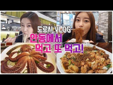 안동 브이로그 (편집자분 찾느라 좀 오래걸린:) ) 먹고 마시고 일하자!♡Andong VLOG Korean VLOG Mukbang Eating Show