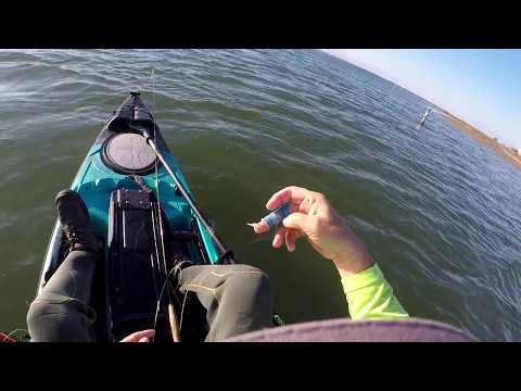 Winter Fly Fishing for Speckled Trout - Galveston (VLOG #1)
