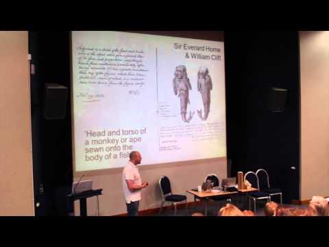 Notes on a newly described species of 'Feejee' mermaid - Paulo Viscardi