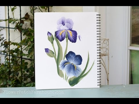How To Paint An Iris Youtube
