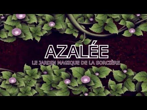 Azalée et le Jardin Magique de la Sorcière - Apprentissage du Séchage des Plantes