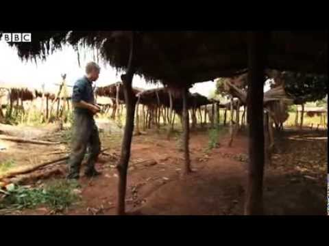 Central African Republic: Abandoned and burnt villages