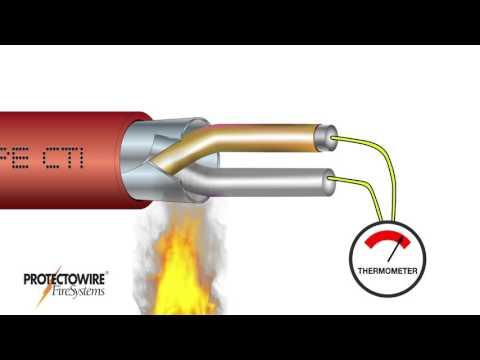 Protectowire CTI Series Detector