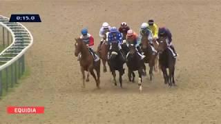 Vidéo de la course PMU PRIX DE PREAUX