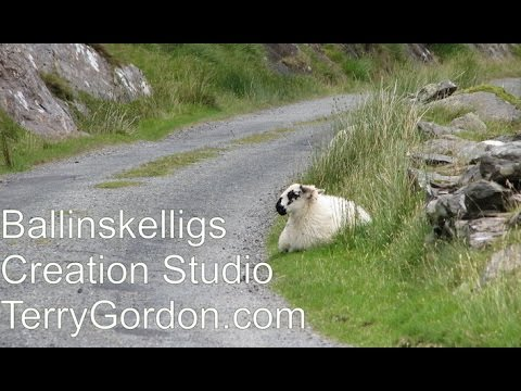 Ballinskelligs Co. kerry Ireland by Terry Gordon Creation Studio