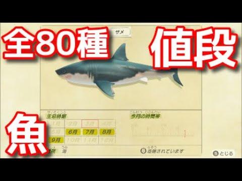 あつ森魚の値段