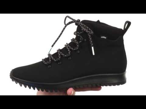 Native Shoes Apollo Apex  SKU:8700519