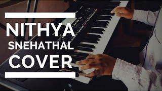 Nithyasnehathal Instrumental Cover | Malayalam Christian Song