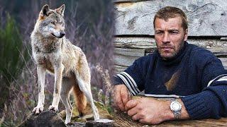 Волчица 3 месяца приходила к мужчине за едой и через некоторое время поведала ему свою тайну