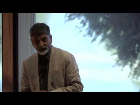From Birds To Bees To 'Bots: what can robots learn from nature? | Mandyam Srinivasan | TEDxUQ