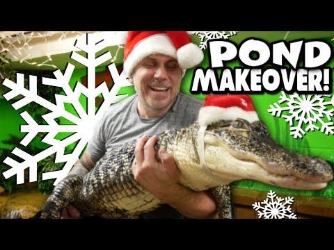 ALLIGATOR (RJ) CHRISTMAS POND MAKEOVER!!   BRIAN BARCZYK