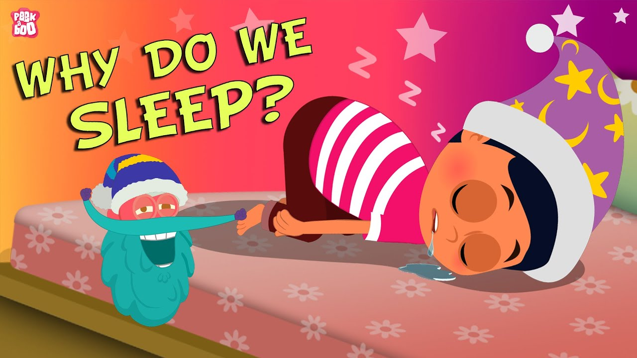 Download Why Do We Sleep? The Dr. Binocs Show | Best Learning Videos For Kids | Peekaboo Kidz