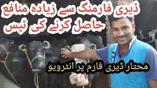 Haji Mukhtar dairy farm|Most profitable dairy farm|Dairy farming in Pakistan|Dairy farming business