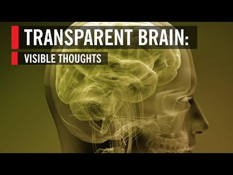 Transparent Brain: Visible Thoughts