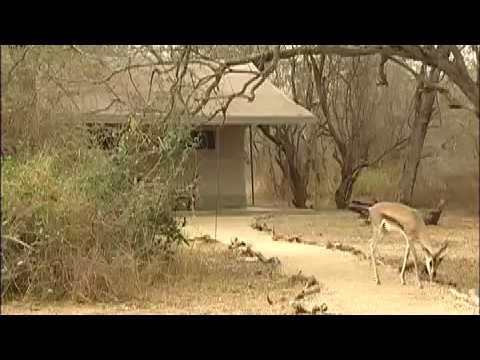 Luxury Tented Camps, Kenya
