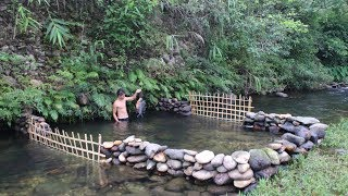 Primitive Technology: Build a Stone Dam to Raise Fish