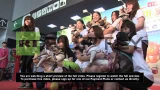 Taiwan: Four-legged Friends Lap Up Luxury At Taipei Pet Show