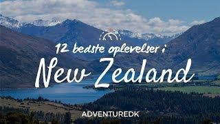 12 bedste oplevelser i New Zealand - ADVENTUREDK