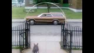 The Littlest Hobo Season 1 Episode 9 Little Girl Lost