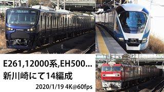 2020/1/19 新川崎にて14編成 E261 ,相鉄12000系, EH500, PF原色等 長編7分! Canon XF400 4K@60fps
