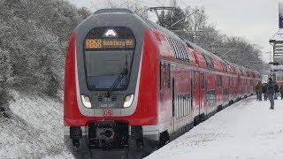 Br111 Fan Doku: Einführung des Main-Neckar-Ried Express Von n-Wagen zur Baureihe 446
