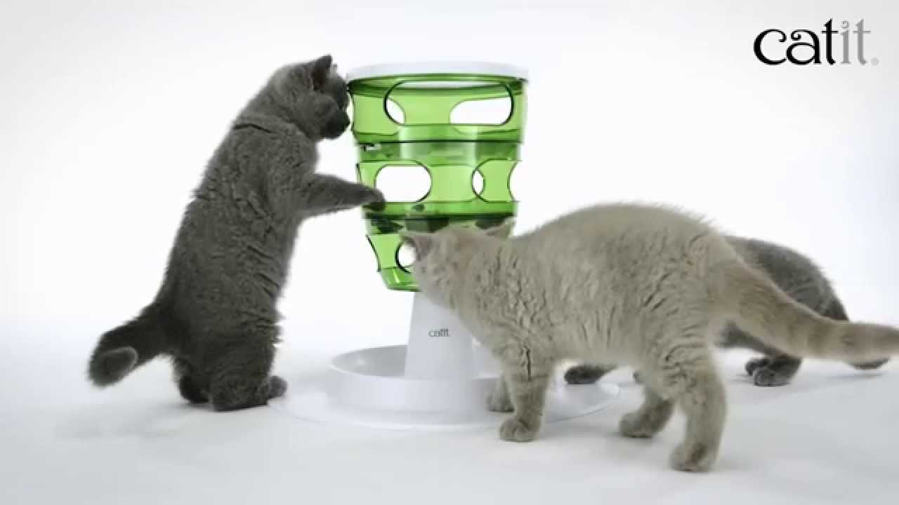 product prod at foster smith cfm box peek toys display a toy cat puzzle drs prize feeder
