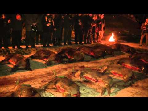 Spoločná poľovačka na diviaky PZ Konerád Plášťovce (Common hunting for wild boar)