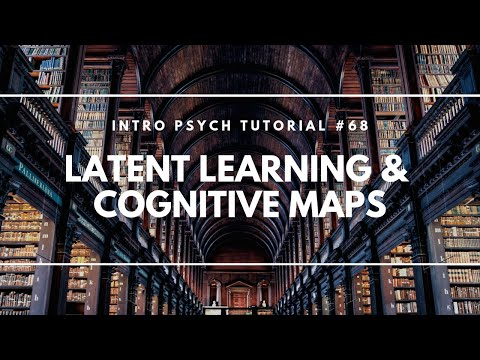 Latent Learning & Cognitive Maps (Intro Psych Tutorial #68)