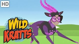 Wild Kratts - Best Season 3 Moments! (Part 3/6) | Kids Videos