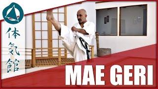 Mae Geri - keage & kekomi (karate front kick)