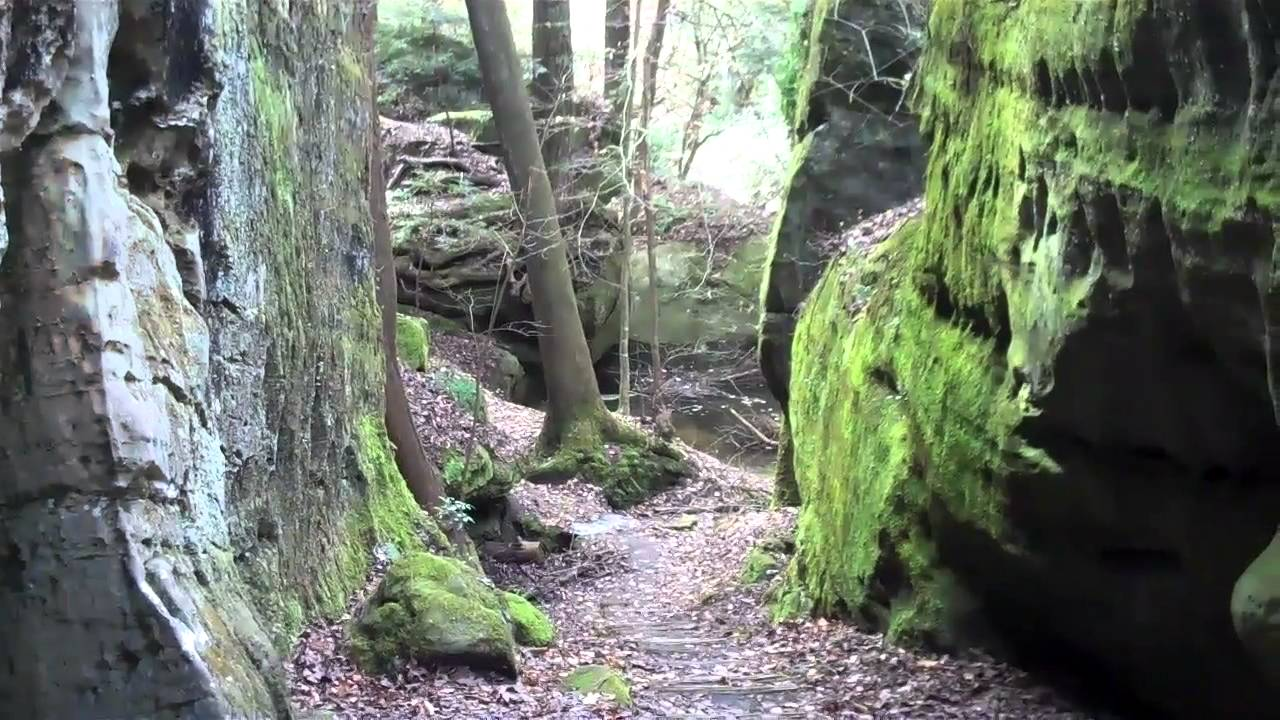Dismals Canyon 2012 Youtube