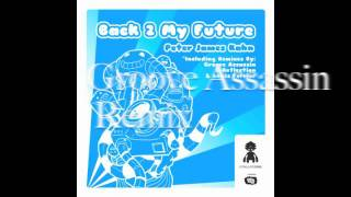 Peter James Kahn - Back 2 My Future Incl. Groove Assassin, D-Reflection & Lewis Ferrier Remixes)