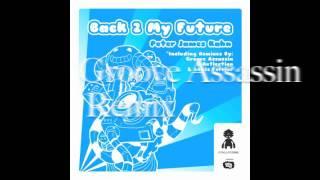 Peter James Kahn - Back 2 My Future Incl. Groove Assassin, D-Reflection & Lewis Ferrier Remixes)