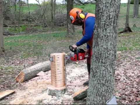 Build A Stump Vise Youtube