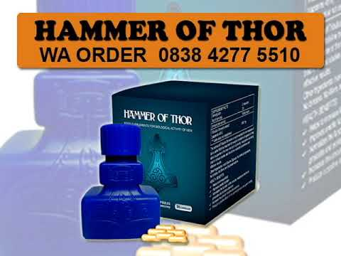 jual hammer of thor semarang 0838 4277 5510 youtube