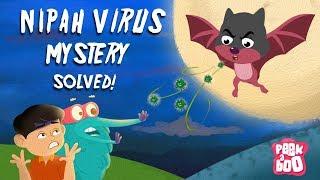 What Is Nipah Virus? - The Dr. Binocs Show   Best Learning Videos For Kids   Peekaboo Kidz