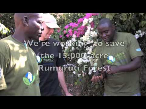 About the Green World Campaign