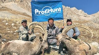 MID ASIAN IBEX HUNTING IN KYRGYZSTAN WITH PROFIHUNT 2018