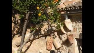 Mallorca in spring - Waltz for classical guitar