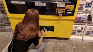 포켓몬카드 자판기 털었습니다