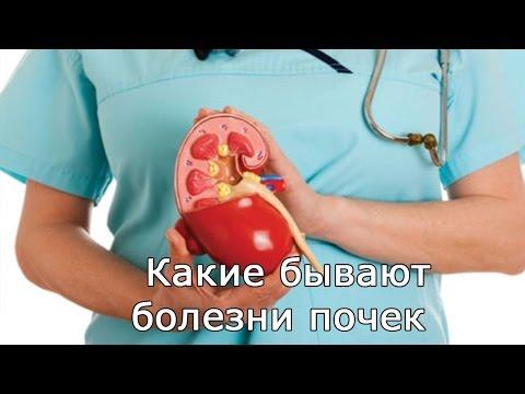 Какие бывают заболевания почек