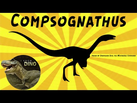 Compsognathus: Dinosaur of the Day