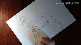 Урок рисования. Изичный способ рисования лошади. Начальный уровень.