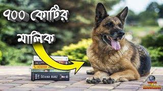 কুকুরটি 700 কোটি টাকার মালিক | সবচেয়ে ধনী প্রাণী | THE RICHEST DOG IN THE WORLD | ODVUT KNOWLEDGE